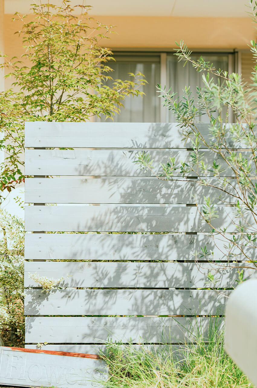 オリーブの影がフェンスに